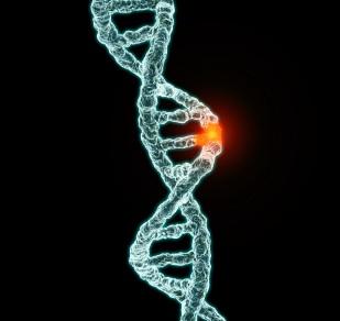 gene-panels